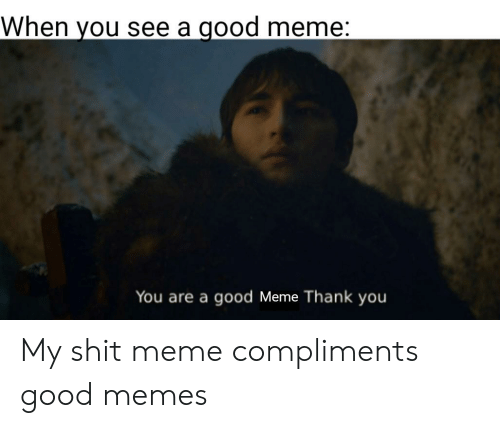 Meme Thank You: When you see a good meme:  You are a good Meme Thank you My shit meme compliments good memes