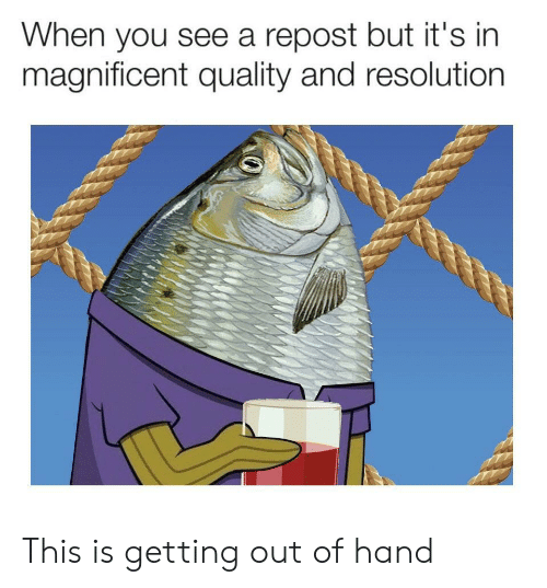 This Is Getting Out Of Hand: When you see a repost but it's in  magnificent quality and resolution This is getting out of hand