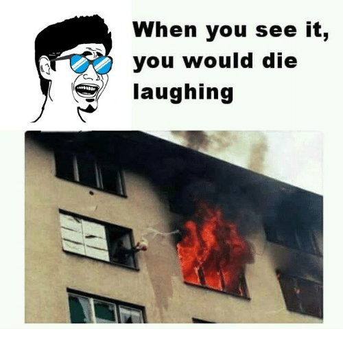 memes: When you see it,  you would die  laughing