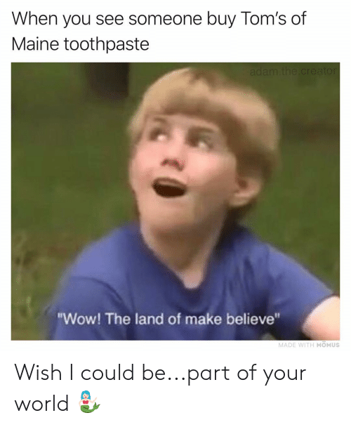 """Toms: When you see someone buy Tom's of  Maine toothpaste  """"Wow! The land of make believe""""  MADE WITH MOMUS Wish I could be...part of your world 🧜🏻♀️"""