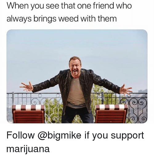 Weed, Marijuana, and Trendy: When you see that one friend who  always brings weed with them Follow @bigmike if you support marijuana