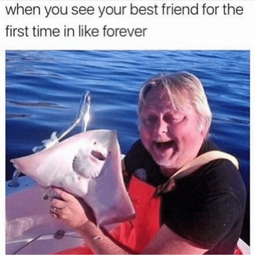 Best Friend, Memes, and Best: when you see your best friend for the  first time in like forever