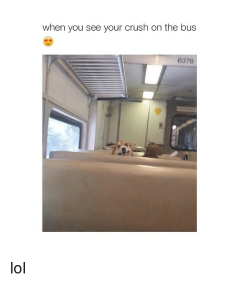 Girl Memes: when you see your crush on the bus  6376 lol