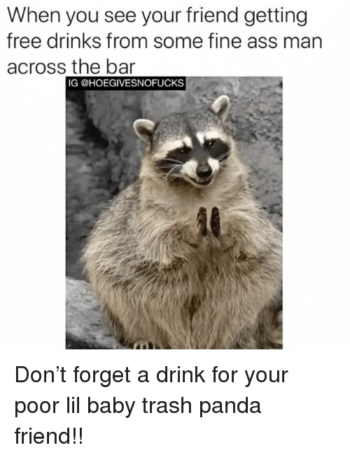 Ass, Trash, and Panda: When you see your friend getting  free drinks from some fine ass man  across the bar  IG @HOEGIVESNOFUCKS Don't forget a drink for your poor lil baby trash panda friend!!