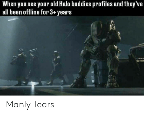 manly: When you see your old Halo buddies profiles and they've  all been offline for 3+years Manly Tears