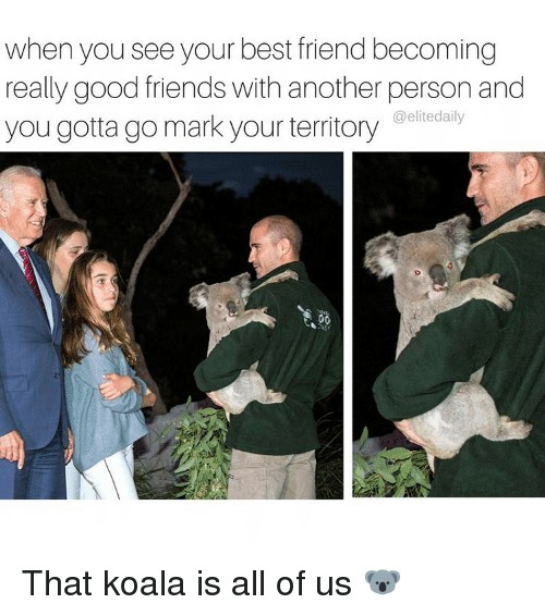 Koalaing: when you seeyour best friend becoming  really good friends with another person and  you gotta go mark your territory  elitedaily That koala is all of us 🐨