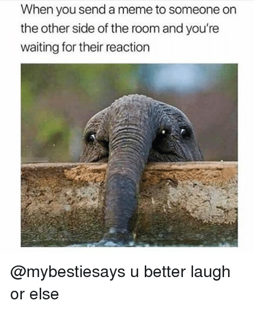 Meme, Girl Memes, and Waiting...: When you send a meme to someone on  the other side of the room and you're  waiting for their reaction @mybestiesays u better laugh or else