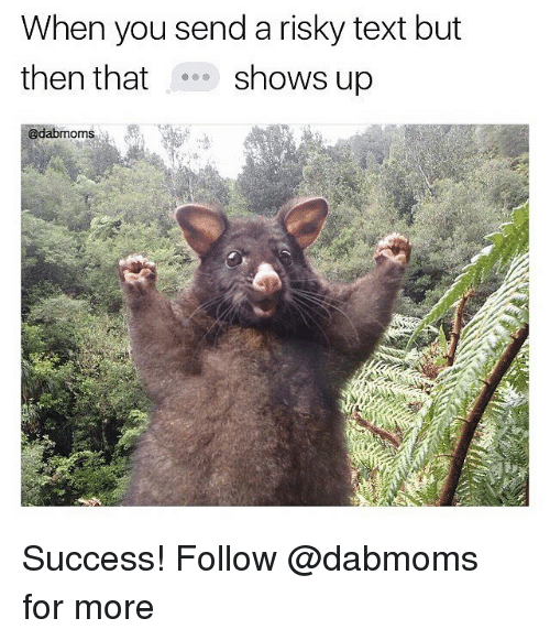 Memes, Text, and Success: When you send a risky text but  then that shows up  @dabmoms Success! Follow @dabmoms for more