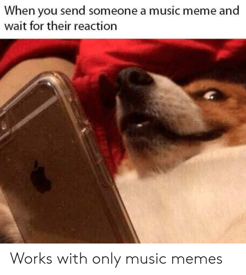 Music Memes: When you send someone a music meme and  wait for their reaction Works with only music memes