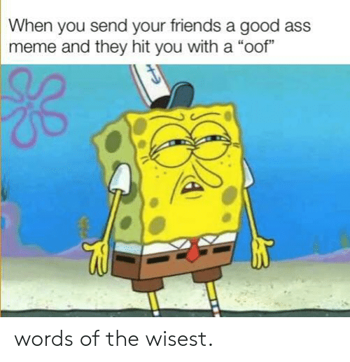 """Ass Meme: When you send your friends a good ass  meme and they hit you with a """"oof"""" words of the wisest."""