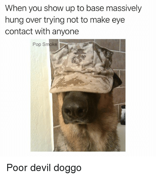 Memes, Pop, and Devil: When you show up to base massively  hung over trying not to make eye  contact with anyone  Pop Smoke Poor devil doggo