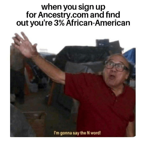 Memes, American, and Ancestry: when you sign up  for Ancestry.com and find  out you're 3% African-American  I'm gonna say the N word!