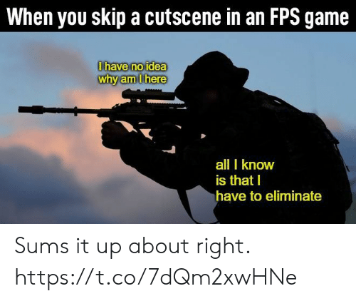 Skip: When you skip a cutscene in an FPS game  0have no idea  why am Ihere  all I know  is that I  have to eliminate Sums it up about right. https://t.co/7dQm2xwHNe