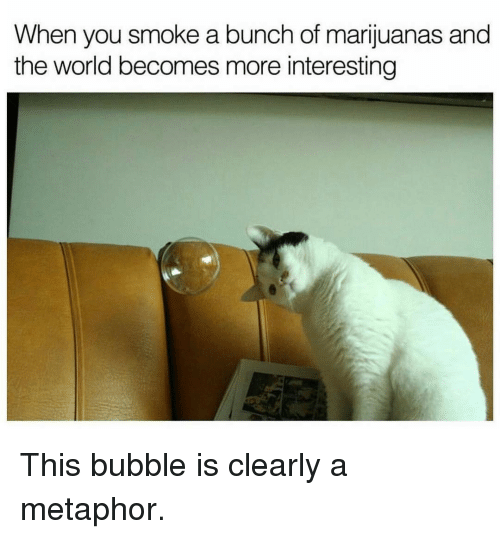 metaphorically: When  you smoke a bunch of marijuanas and  the world becomes more interesting This bubble is clearly a metaphor.