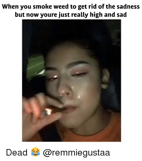 Weed, Marijuana, and Sad: When you smoke weed to get rid of the sadness  but now youre just really high and sad Dead 😂 @remmiegustaa