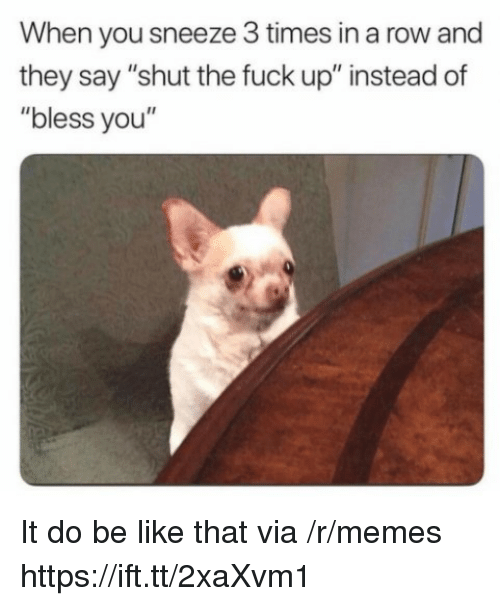"Be Like, Memes, and Fuck: When you sneeze 3 times in a row and  they say ""shut the fuck up"" instead of  ""bless you"" It do be like that via /r/memes https://ift.tt/2xaXvm1"