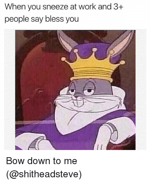 Memes, Work, and 🤖: When you sneeze at work and 3+  people say bless you Bow down to me (@shitheadsteve)