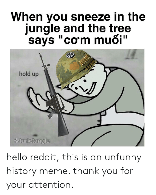 "Meme Thank You: When you sneeze in the  jungle and the tree  says ""com muoi""  hold up  @turk.tangle hello reddit, this is an unfunny history meme. thank you for your attention."