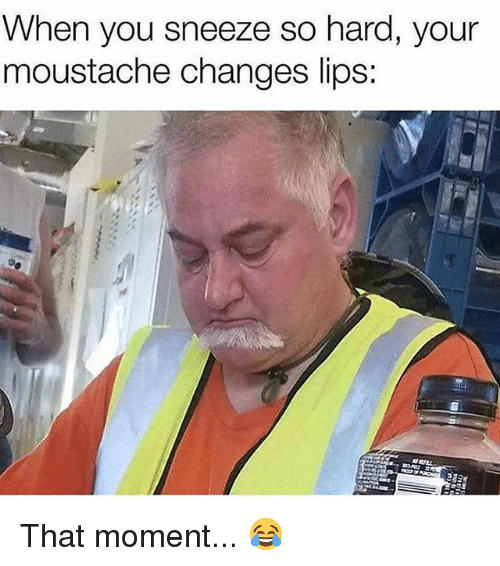 Memes, 🤖, and Moment: When you sneeze so hard, your  moustache changes lips: That moment... 😂