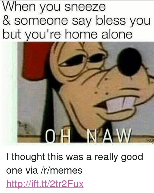 """Being Alone, Home Alone, and Memes: When you sneeze  & someone say bless you  but you're home alone <p>I thought this was a really good one via /r/memes <a href=""""http://ift.tt/2tr2Fux"""">http://ift.tt/2tr2Fux</a></p>"""