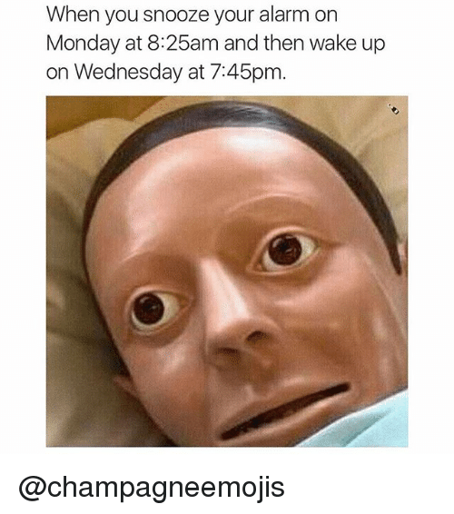 Dank Memes: When you snooze your alarm on  Monday at 8:25am and then wake up  on Wednesday at 7:45pm. @champagneemojis