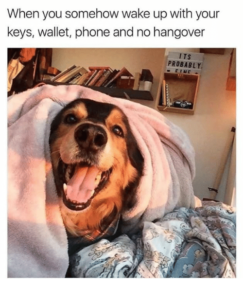 No Hangover: When you somehow wake up with your  keys, wallet, phone and no hangover  PROBABLY