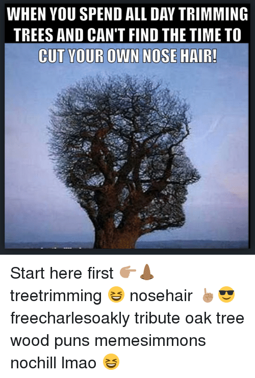 Wood Puns: WHEN YOU SPEND ALL DAY TRIMMING  TREES AND CAN'T FIND THE TIME TO  CUT YOUR OWN NOSE HAIR! Start here first 👉🏽👃🏾 treetrimming 😆 nosehair ☝🏽️😎 freecharlesoakly tribute oak tree wood puns memesimmons nochill lmao 😆