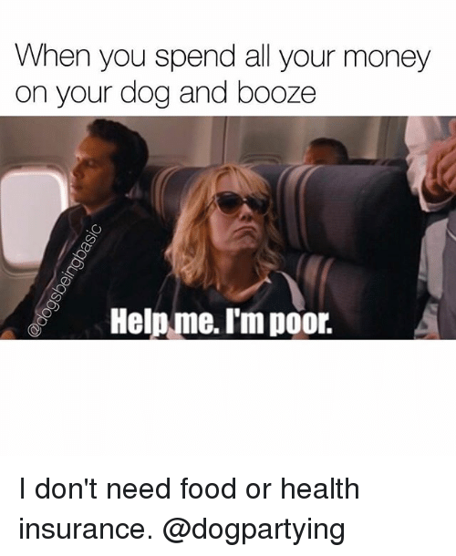 Need Food: When you spend all your money  on your dog and booze  Help me. I'm poor. I don't need food or health insurance. @dogpartying