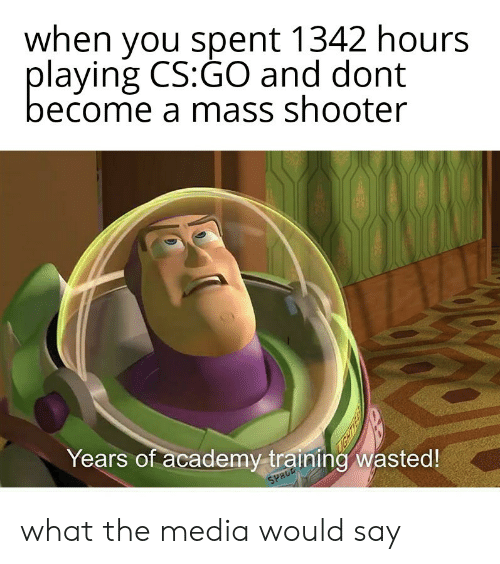 cs go: when you spent 1342 hours  playing CS:GO and dont  become a mass shooter  Years of academy training wasted!  SPRCE what the media would say