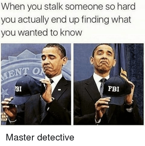 pbi: When you stalk someone so hard  you actually end up finding what  you wanted to know  PBI  BRA Master detective