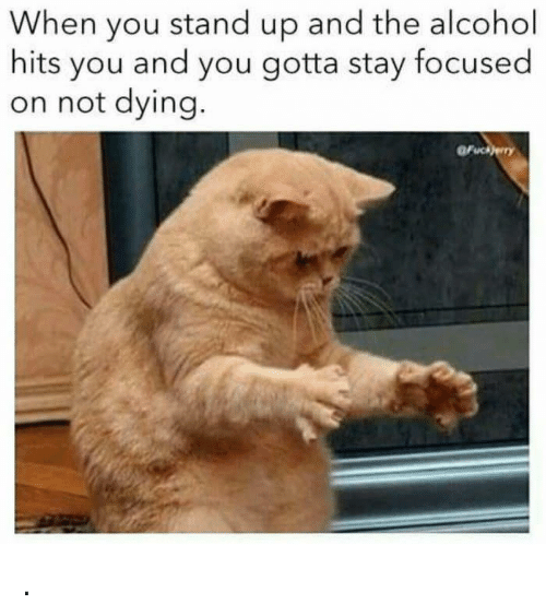Stay Focused: When you stand up and the alcohol  hits you and you gotta stay focused  on not dying  Fuckery .