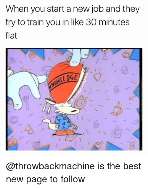 Memes, Best, and Train: When you start a new job and they  try to train you in like 30 minutes  flat  LEDGE @throwbackmachine is the best new page to follow