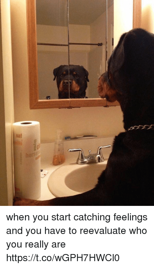 Reevaluate: when you start catching feelings and you have to reevaluate who you really are https://t.co/wGPH7HWCl0
