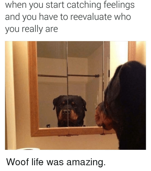 Reevaluate: when you start catching feelings  and you have to reevaluate who  you really are Woof life was amazing.