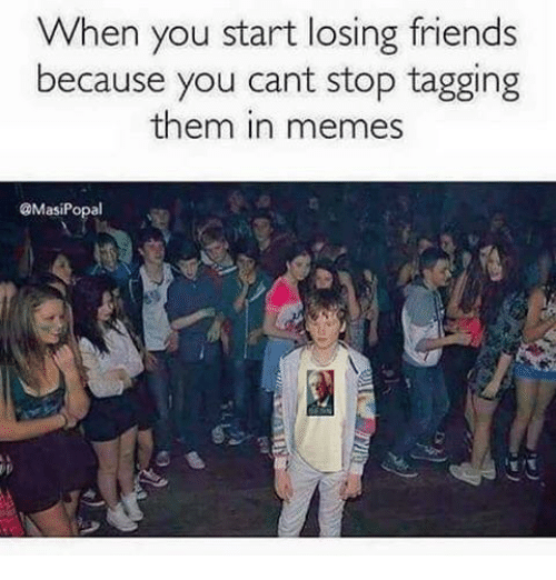 Friends, Meme, and Memes: When you start losing friends  because you cant stop tagging  them in memes  @MasiPopal