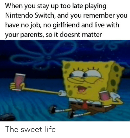 No Girlfriend: When you stay up too late playing  Nintendo Switch, and you remember you  have no job, no girlfriend and live with  your parents, so it doesnt matter The sweet life