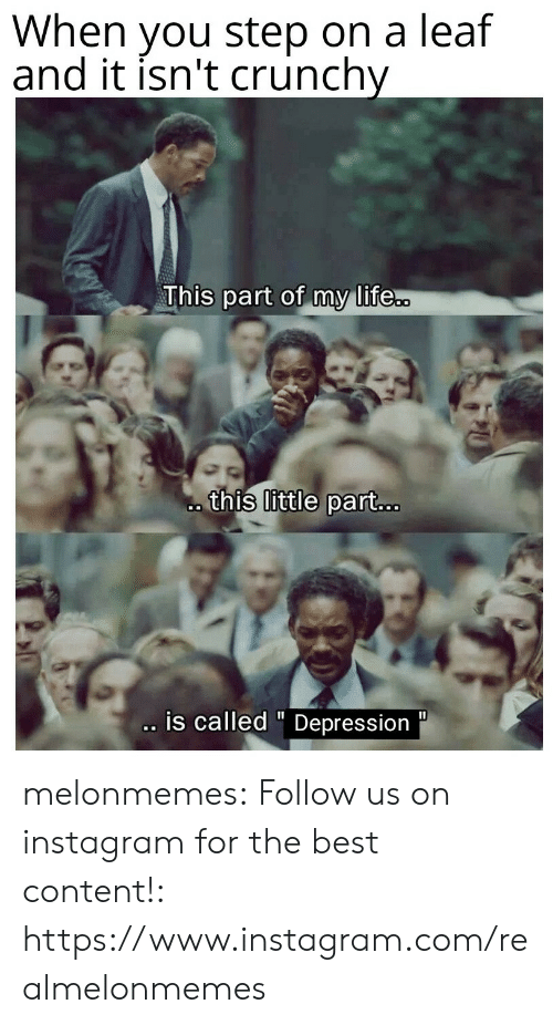 """A Leaf: When you step on a leaf  and it isn't crunchy  This part of my life..  this little part...  .is called """" Depression  11 melonmemes:  Follow us on instagram for the best content!: https://www.instagram.com/realmelonmemes"""