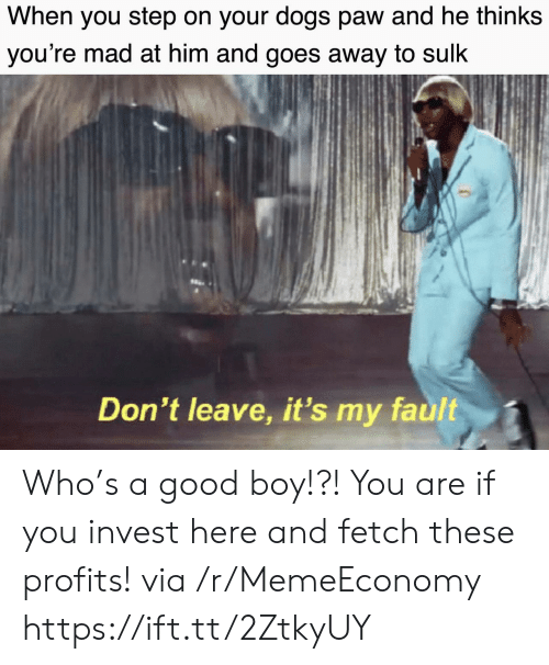 paw: When you step on your dogs paw and he thinks  you're mad at him and goes away to sulk  Don't leave, it's my fault Who's a good boy!?! You are if you invest here and fetch these profits! via /r/MemeEconomy https://ift.tt/2ZtkyUY