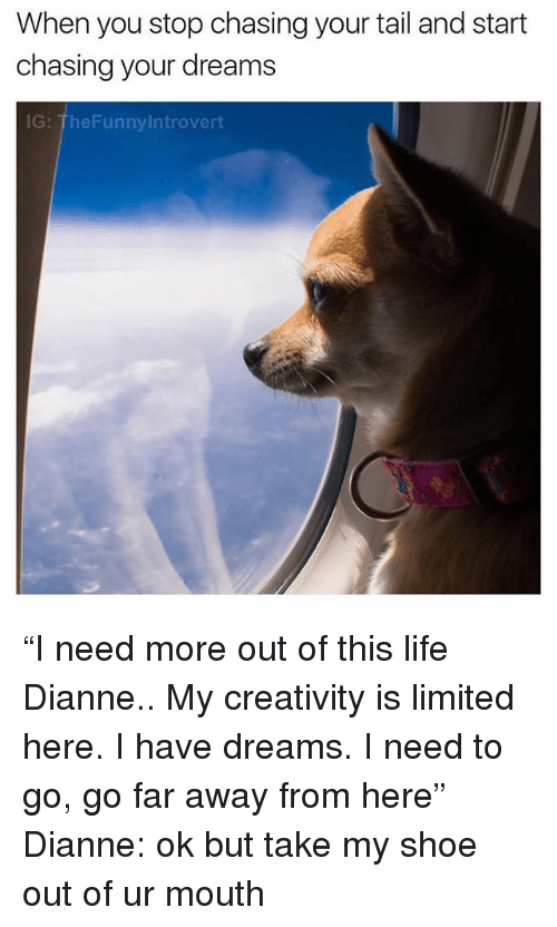 "Life, Limited, and Dank Memes: When you stop chasing your tail and start  chasing your dreams  G: TheFunnylntrovert ""I need more out of this life Dianne.. My creativity is limited here. I have dreams. I need to go, go far away from here"" Dianne: ok but take my shoe out of ur mouth"