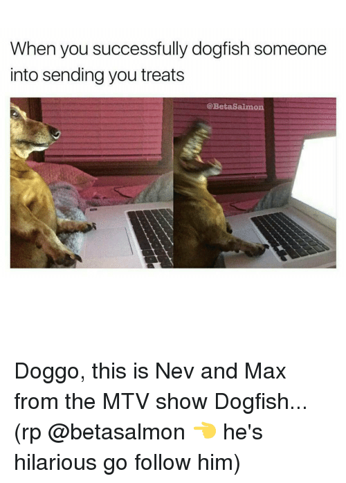 Memes, Mtv, and Salmon: When you successfully dogfish someone  into sending you treats  Beta Salmon Doggo, this is Nev and Max from the MTV show Dogfish... (rp @betasalmon 👈 he's hilarious go follow him)