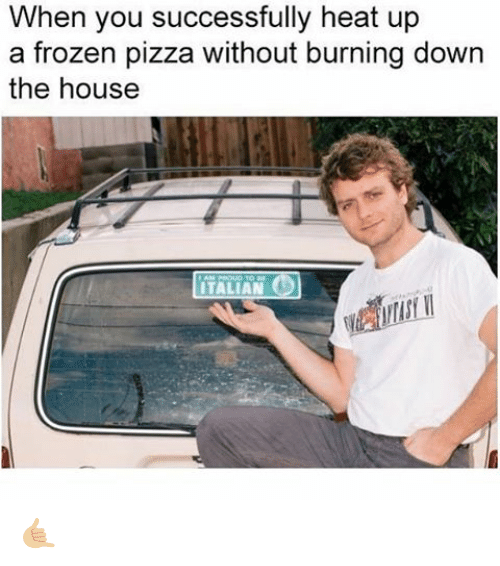 Frozen, Memes, and Pizza: When you successfully heat up  a frozen pizza without burning down  the house  ITALIAN 🤙🏼