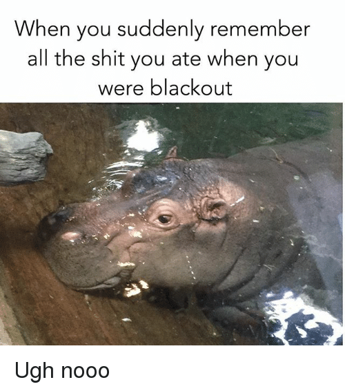 Shit, Girl Memes, and All The: When you suddenly remember  all the shit you ate when you  were blackout Ugh nooo