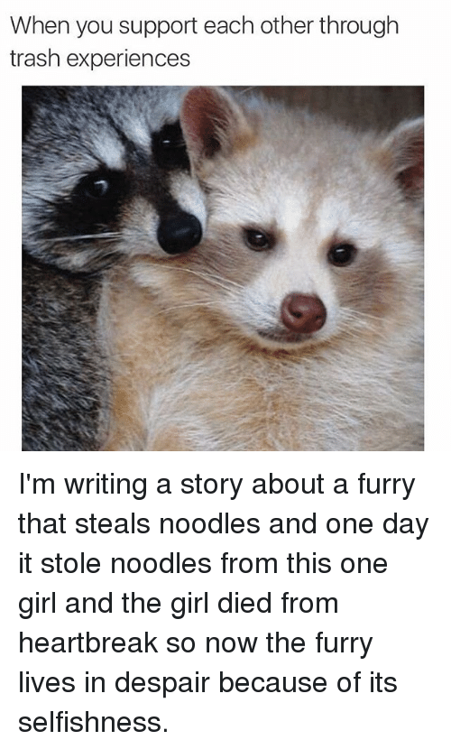 Despairate: When you support each other through  trash experiences I'm writing a story about a furry that steals noodles and one day it stole noodles from this one girl and the girl died from heartbreak so now the furry lives in despair because of its selfishness.