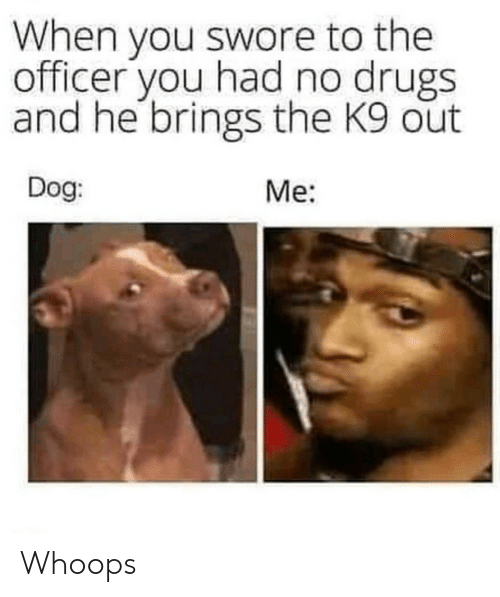 whoops: When you swore to the  officer you had no drugs  and he brings the K9 out  Dog  Me: Whoops