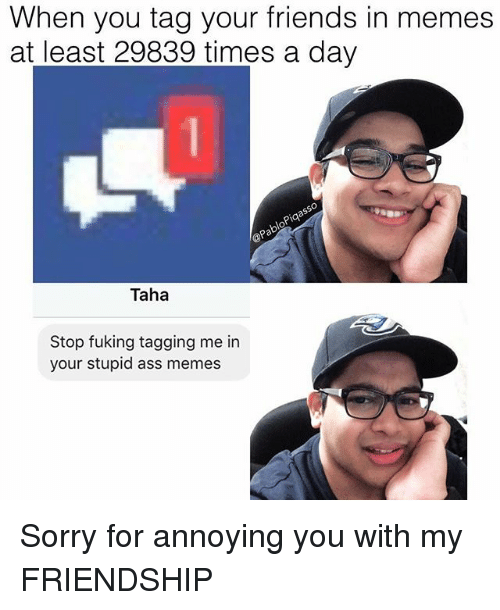 Ass Memes: When you tag your friends in memes  at least 29839 times a day  pia  OP  Taha  Stop fuking tagging me in  your stupid ass memes Sorry for annoying you with my FRIENDSHIP
