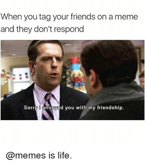 Friends, Life, and Meme: When you tag your friends on a meme  and they don't respond  Sorry l annoyed you with my friendship. @memes is life.
