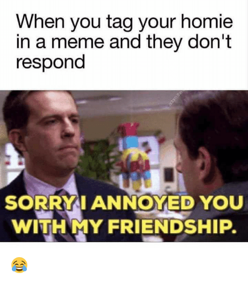 when you tag your homie in a meme and they 20506250 🔥 25 best memes about sorry i annoyed you with my friendship,Homie Hopper Meme