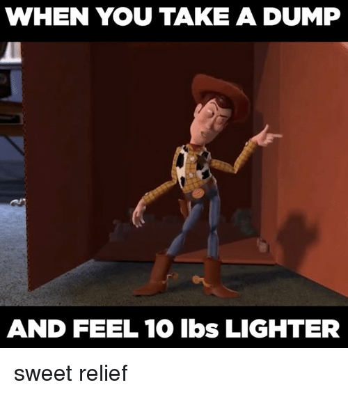 Memes, 🤖, and Lbs: WHEN YOU TAKE A DUMP  AND FEEL 10 lbs LIGHTER sweet relief
