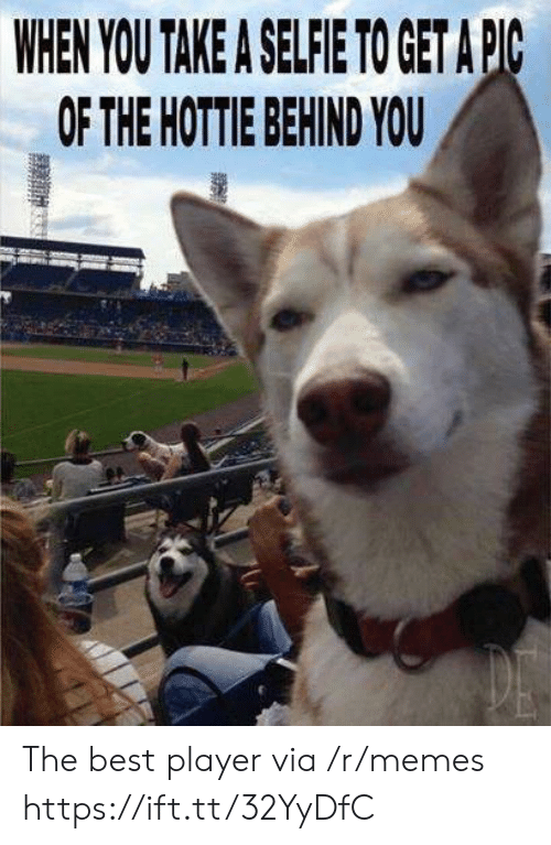 hottie: WHEN YOU TAKE A SELFIE TO GET APC  OF THE HOTTIE BEHIND YOU The best player via /r/memes https://ift.tt/32YyDfC