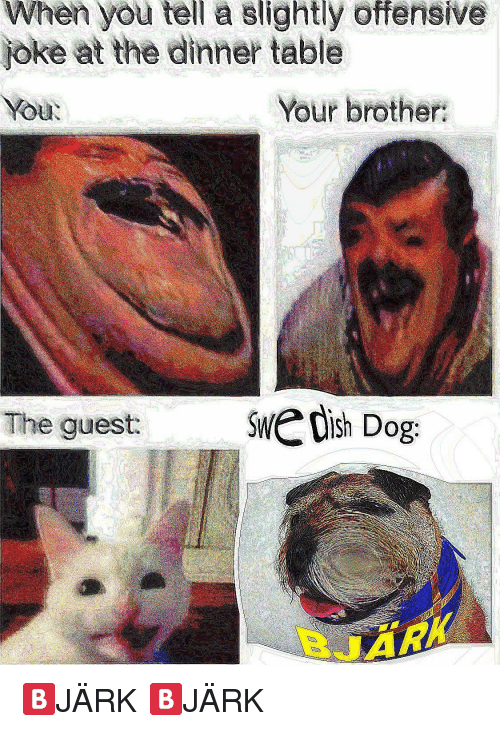 Offensive Joke: When you tell a slightly offensive  joke at the dinner ble  You  Your brother  The guest:  dish Dog 🅱️JÄRK 🅱️JÄRK